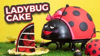 Ladybug CAKE! | Red & Black Marble Cake | How To Cake It