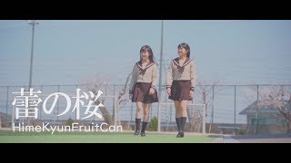 HimeKyunFruitCan『蕾の桜』MV