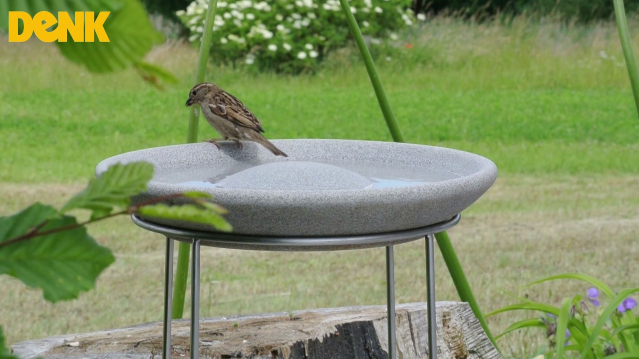 Vogeltränke Granicium® - DENK-Keramik - YouTube