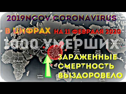 УМЕРЛО 1000+ ЧЕЛОВЕК ✦ #КОРОНАВИРУС ✧ 2019-nCoV ✦ В ЦИФРАХ ✦ на 11 ФЕВРАЛЯ 2020