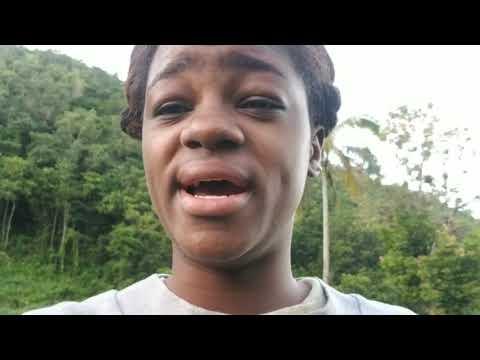 Young female farmer struck by thieves in St. Elizabeth .