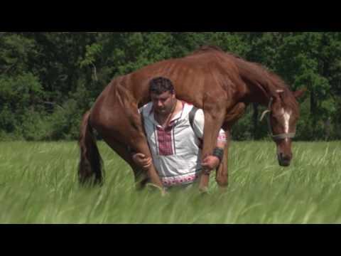 термобельё: покататься видео лошади перетягивающей канат размер