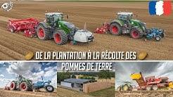 Chantier de A à Z : De la plantation à la récolte des pommes de terre !