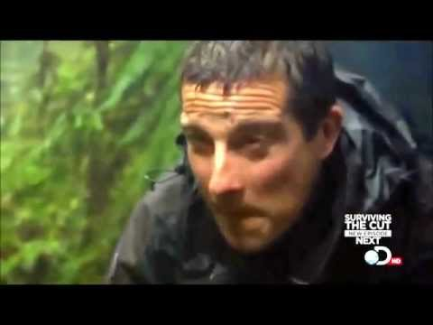 Man vs Wild: Bear Grylls Hunts a Possum in New Zealand