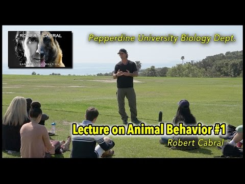 Pepperdine University - Robert Cabral Animal Behavior Lecture Clip #1 - Dog Training