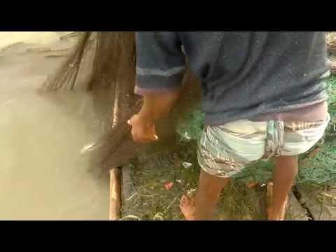 Fishing, Hilsha Fish, River Meghna, Sugandhi. Razib Sharker..