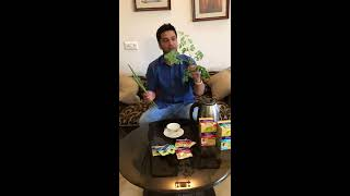 Moringa Green Tea Benefits, Murungakai or सहजन के फायदे | Kunal Kapur