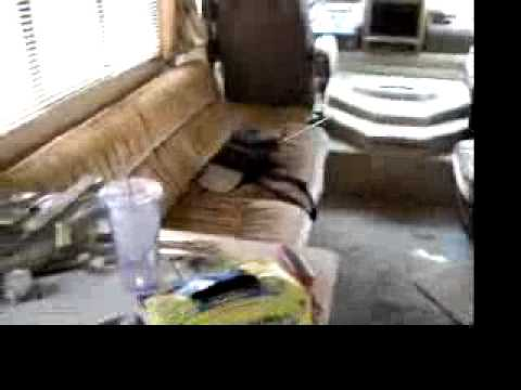 hqdefault?sqp= oaymwEWCKgBEF5IWvKriqkDCQgBFQAAiEIYAQ==&rs=AOn4CLBsGbD1CNZL3Ubgj8ad lnpbApT g 1989 georgie boy cruise master class a in pueblo, co youtube 1999 georgie boy cruise master wiring diagram at gsmx.co