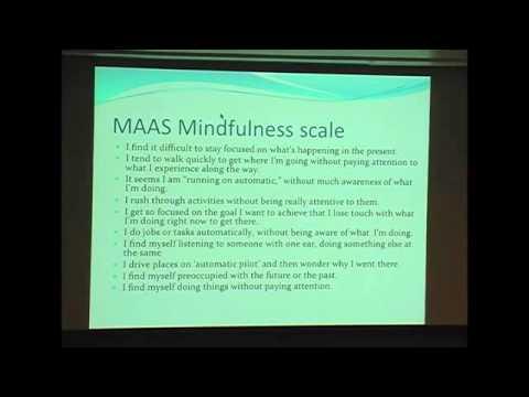 Dyslexic Advantage   Mind Wandering with Dr Jonathan Schooler