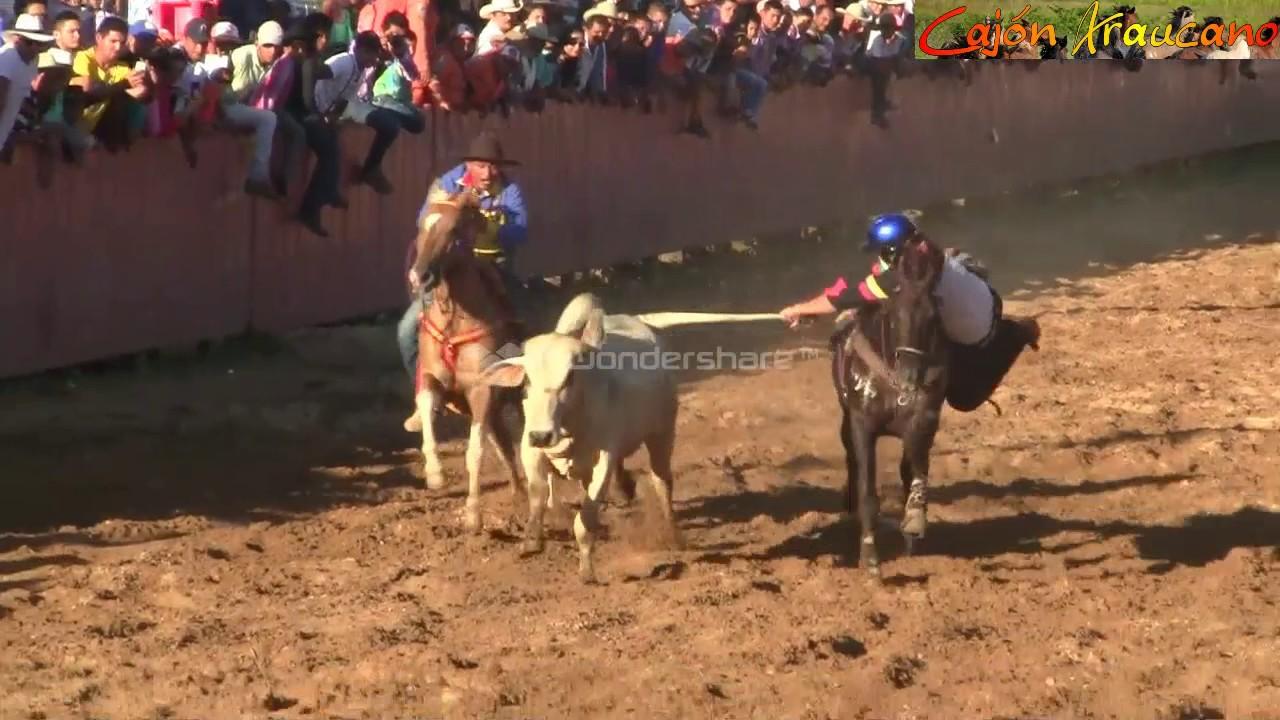 COLEO Final Fiestas de Arauca 2016