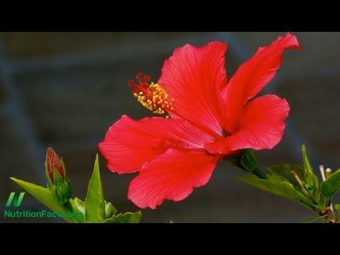 Herbal Tea Update: Hibiscus