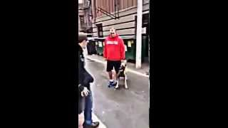 Extremely Well Trained Dog Can Attack On Command