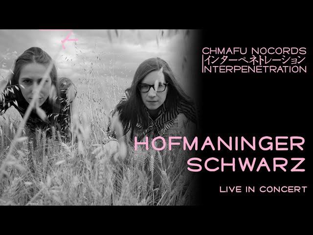 Hofmaninger / Schwarz @ Interpenetration 1.9.1