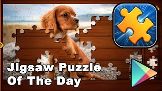 Jigsaw Puzzle Of The Day - Android Games (Puzzle, Brain Games)