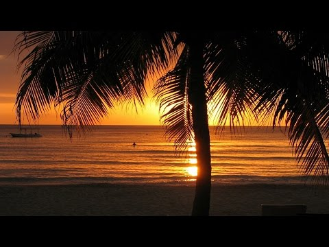 Reggae Instrumental Music - Island of Jamaica