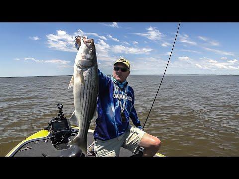 FOX Sports Outdoors SouthWEST #15 - 2019 Texoma Oklahoma Striper Fishing