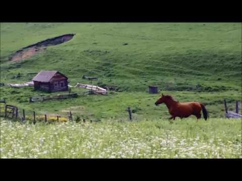 ПРОДАМ земельный участок в Горном Алтае