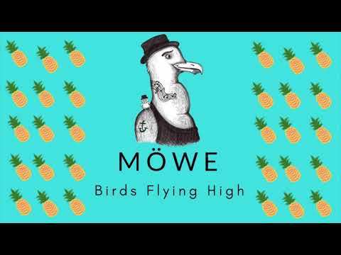 MÖWE - Birds Flying High