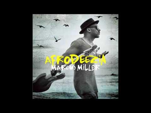 Marcus Miller - Afrodeezia (2015) jazz | bass | funk | fusion | jazz fusion | fip