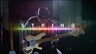 Ernie Ball: String Theory featuring Mike Herrera of MxPx