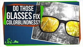 Download Do Those Glasses Really Fix Colorblindness? Mp3 and Videos