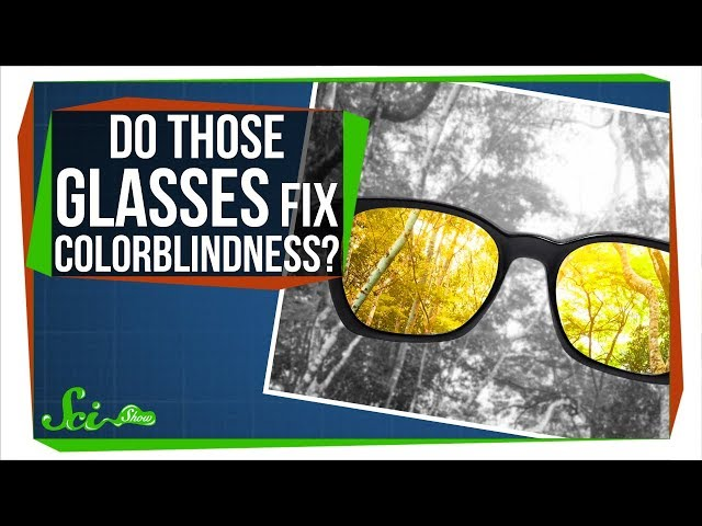 Do Those Glasses Really Fix Colorblindness?