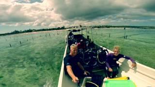 Indonesian adventures Cameron Treble 2015