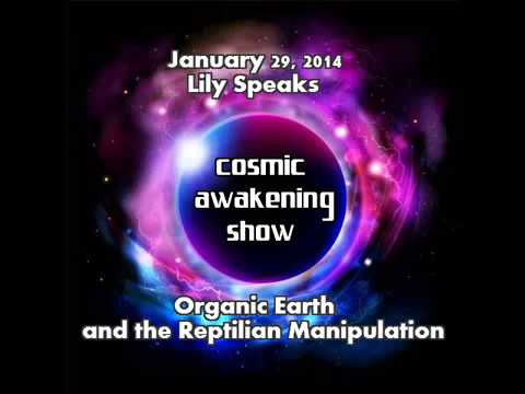 Lily Earthling speaks Organic Earth timeline and the reptili