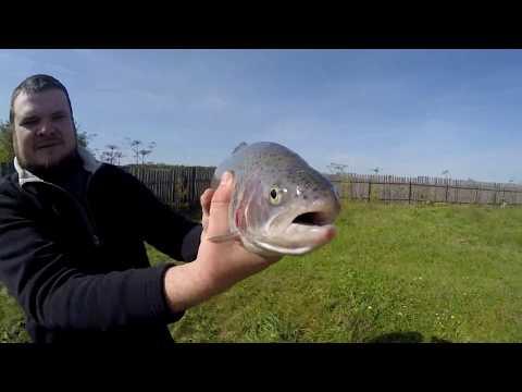 видео рыбалка forel