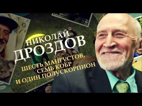 «Николай Дроздов. Шесть мангустов, семь кобр и один полускорпион».