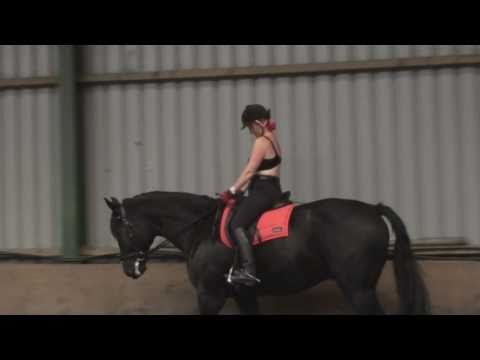 Bras and horse riders!!