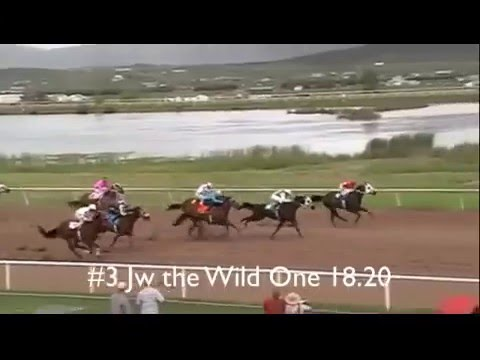 Wyoming Downs Racetrack