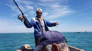 Ловим окуня в черном море