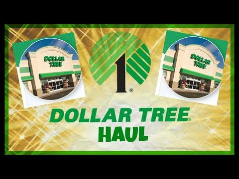 Dollar Tree Haul January 18th 2020