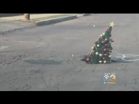 Hilary - Woman puts Christmas tree in pothole to help people avoid it