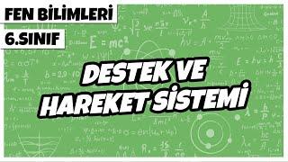 6. Sınıf Fen Bilimleri - Destek ve Hareket Sistemi  2021