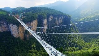 Terrifying Glass Bridge - World's Tallest and Longest Glass Bridge in Zhangjiajie Park