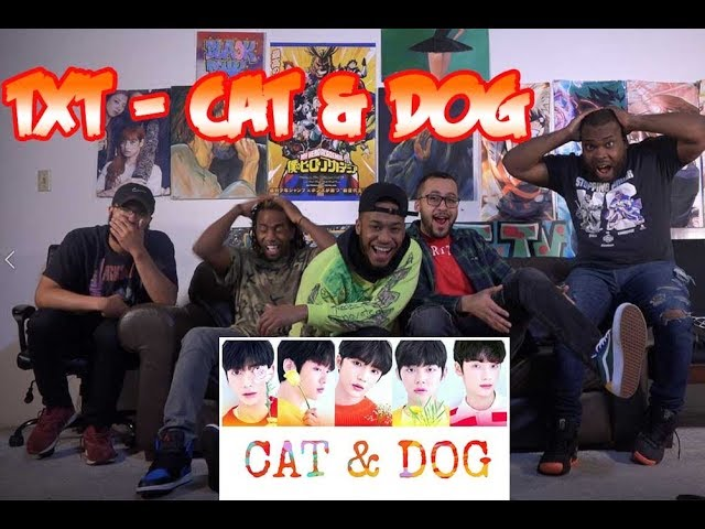 TXT - CAT & DOG Reaction/Review  (Color Coded Lyrics Eng/Rom/Han/가사)