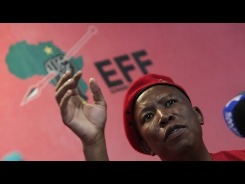 'Good for Blade' but Zuma 'should have reshuffled himself': Malema