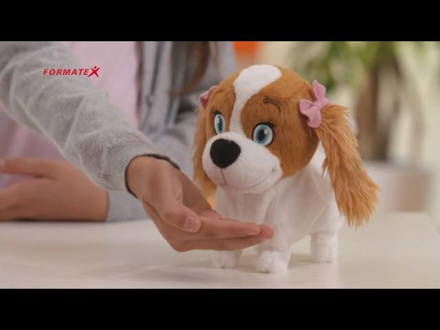 Lola az interaktív kutya