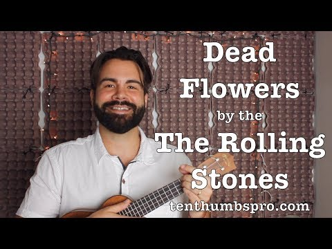 Dead Flowers - The Rolling Stones - Easy Beginner Ukulele Tutorial