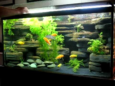 Diy aquarium background 90 gallon made from styrofoam for Aquarium waterfall decoration