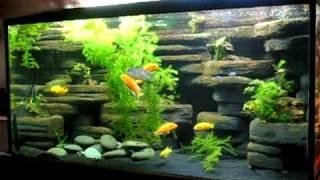 Aquascaping tanks youtube for Decoration zen aquarium