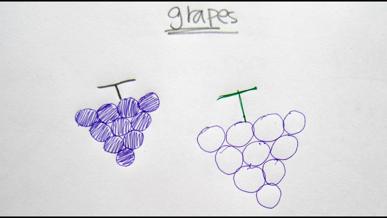 How To Draw Cartoon Grapes Ǖ�卡通葡萄 Easy Drawing Tutorial For Beginners