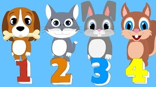 Hayvanları Sayıyoruz Şarkısı 2 – Sayıları Öğrenelim | Okul Öncesi Çocuk Şarkıları