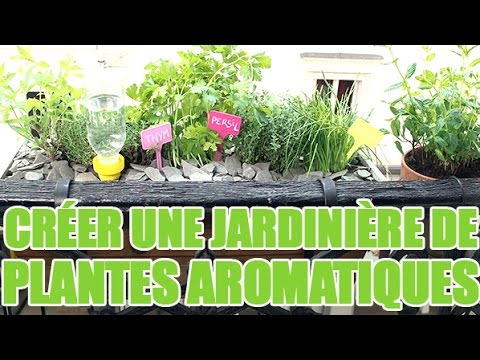 Composer une jardini re rectangulaire d co jardin avec for Video deco jardin