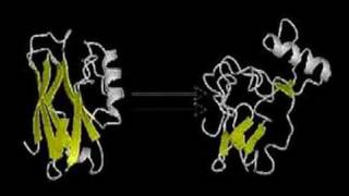 When and Where do Proteins Fold?