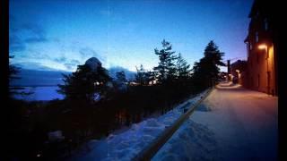Teemu T - Reverbs . ambient dub mix . 303 . 2012