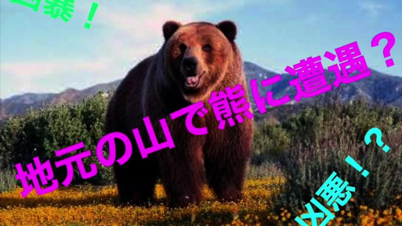 【恐怖】山の中から・・・熊?!山姥?! - YouTube