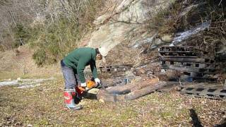 Go to mountain of friend. Making firewood.